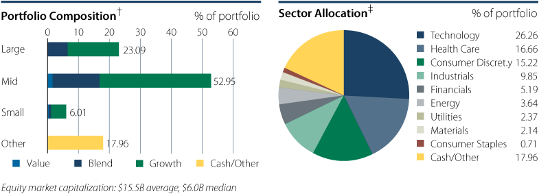 Eventide Gilead Fund Portfolio Composition